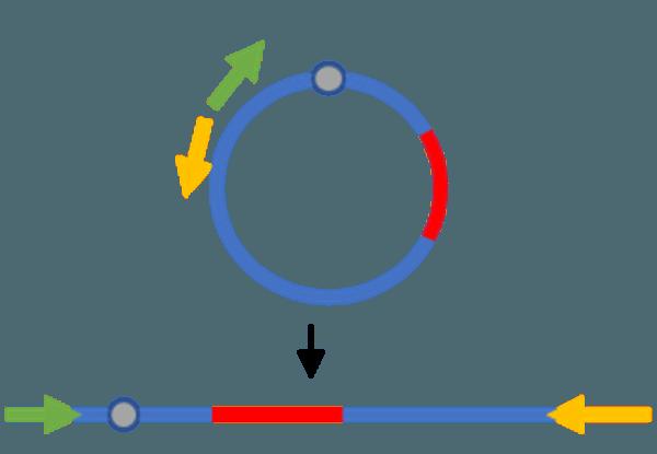NGA NGS Sample Prep Step 5