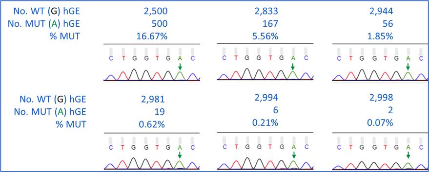PointSupressor Wild Type Suppression Example Data
